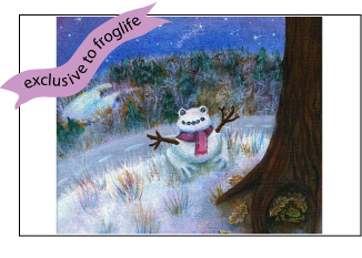 snow-toad-card